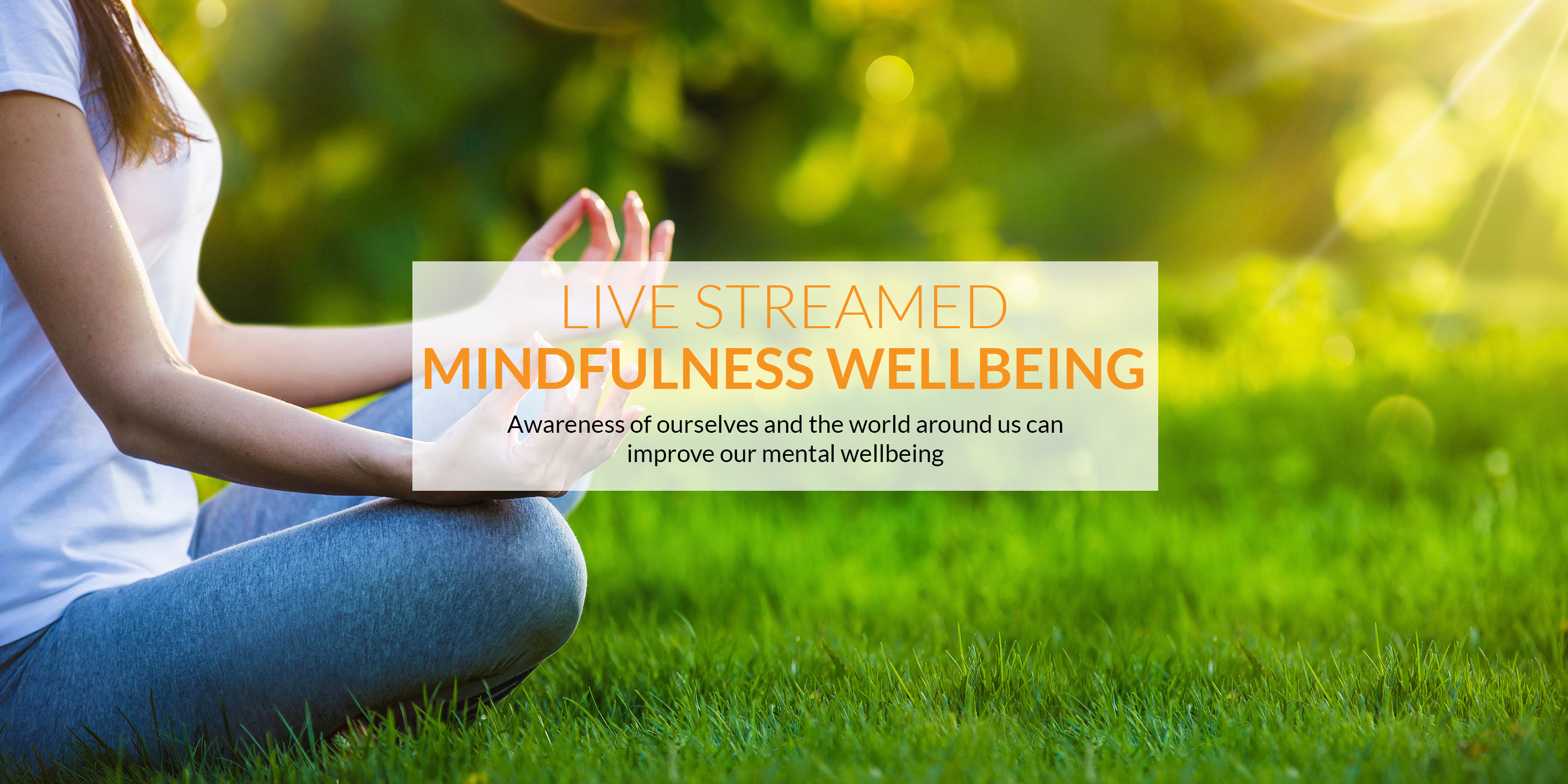 The best Mindfulness Wellbeing live-streamed